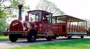 Locomotief (Bello)349