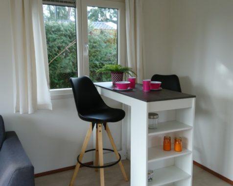 Prachtige chalet met 2 slaapkamers instapklaar met onderhoudsarme uit op rustig 45plus park in Voorthuizen (2)
